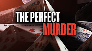 The Perfect Murder thumbnail