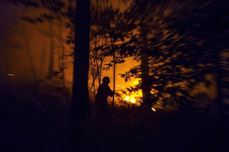 GNR identifica três suspeitos de autoria de fogos florestais em Lamego e Tarouca