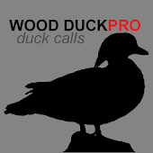 Wood Duck Calls Wood DuckPro