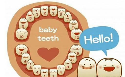 Mối liên hệ giữa dinh dưỡng và sự phát triển hệ răng của trẻ
