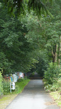 Photo: Talweg (Wambel Höhe Rennbahn)
