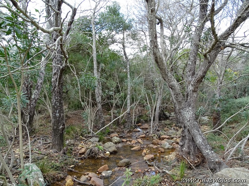 Corredor Verde 2 Bahías desde el Celemín hasta la Montera del Torero