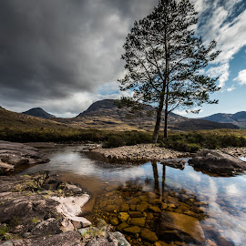Tree. by Haim Rosenfeld - Landscapes Mountains & Hills ( old, mountain, stone, rock, yellow, travel, long, sky, tree, shadow, light, foreground, orange, celtic, colors, texture, image, horizon, lake, brawn, highlands, exposure, scotland, reflection, europe, colorful, land, reflections, north, landscape, adventure, kingdom, dreamlike, lonely, water, clouds, uk, united, green, scottish, scenic, in, photo, blue, sunset, outdoor, brown, scenery, stunning, britain )