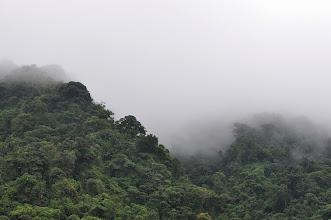 Photo: Monteverde = cloud forest