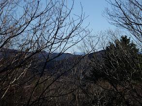 遠くに白く見える山が