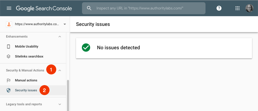 security issues report in google search console