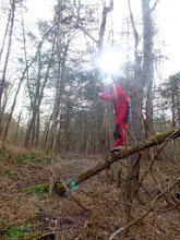 Photo: Doug swinging on the vine from the downed tree
