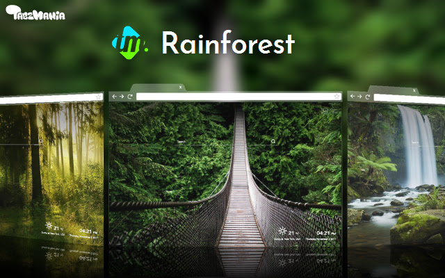 Tropical Rainforest Wallpapers HD - New Tabs