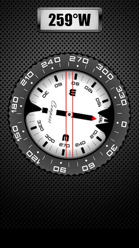 Compass PRO screenshot 3