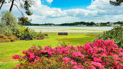 Propriété du Verdon, Vue sur la mer depuis le rhododendron