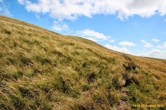 Photo: One of the many paths that seem to contour around and slightly up Fan Nedd Slope