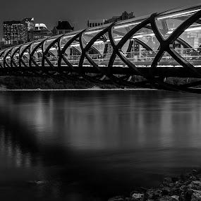 Calgary Peace Bridge by Rick Pelletier - Novices Only Landscapes (  )