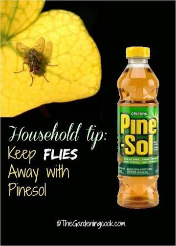 HOUSEHOLD TIPS....FLY AND WASP SPRAY