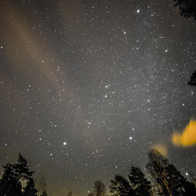 Winter nights by Kjell Kasin - Uncategorized All Uncategorized ( sweden, winter, cold, stars, landscape photography )