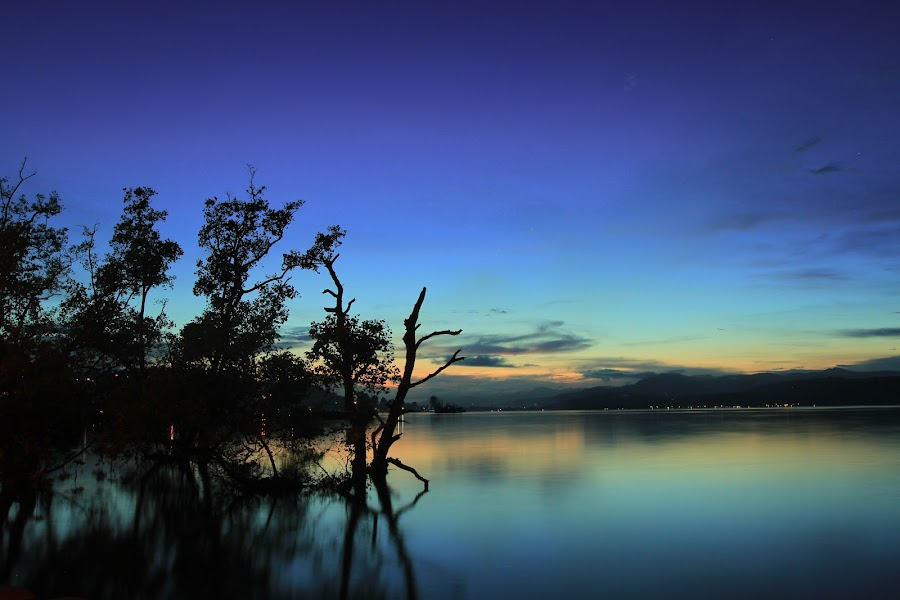 Sunset at Lateri Mangrove by Vander Christian - Landscapes Sunsets & Sunrises