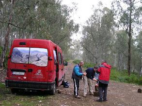 Photo: nocleg w lesie eukaliptusowym