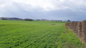 terrain à Brouchy (80)