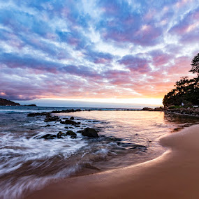 Avoca Beach by Mel Stratton - Landscapes Sunsets & Sunrises ( surf, sand, sunrise, nsw, rocks, avoca, beach, australia, water, trees, landscape )