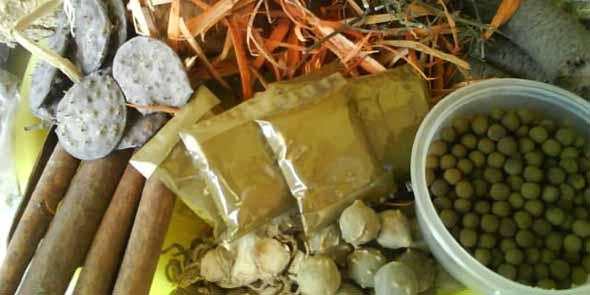 obat herbal penyubur kandungan
