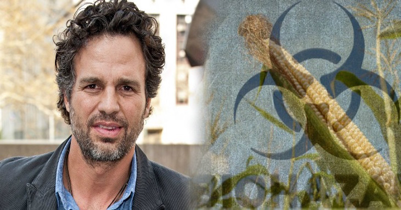 "Actor Mark Ruffalo Calls Out Monsanto: ""You Are Poisoning People"""