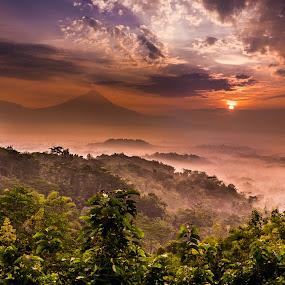 Sunrise from Punthuk Setumbu by Alexander Nainggolan - Landscapes Mountains & Hills ( hills, mountain, yogyakarta, indonesia, punthuk setumbu, magelang, sunrise, landscape, misty, borobudur,  )