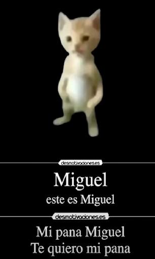 Mi Pana Miguel