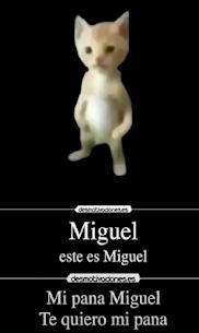 Mi Pana Miguel 2