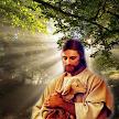Inspirational Bible Verses & Holy Jesus Wallpapers APK