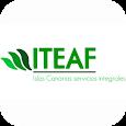 ITEAF CANARIAS icon