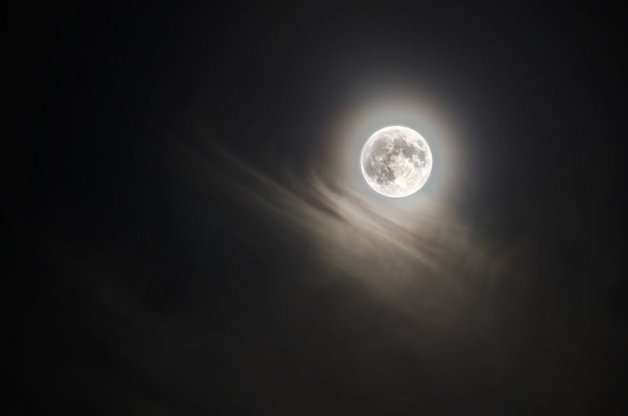 full moon by Lukasz Betkowski - Landscapes Starscapes ( clouds, moon, full, dark, night )