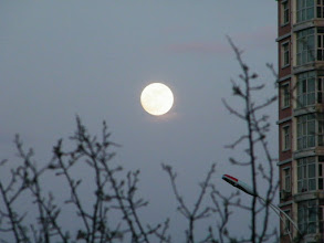 Photo: a full moon, reported will be the largest and brightest in 2012, from streetview of eastern Qiqihar, esp QRRS district.