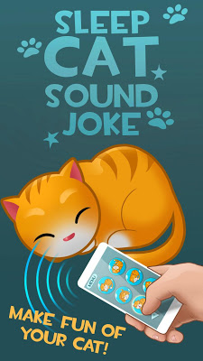 Sleep Cat Sound Joke - screenshot
