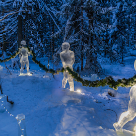 Ice sculpture by Sakari Partio - Artistic Objects Other Objects