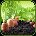 Latest Vegetable Garden Ideas icon