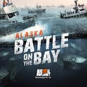 Alaska: Battle on the Bay