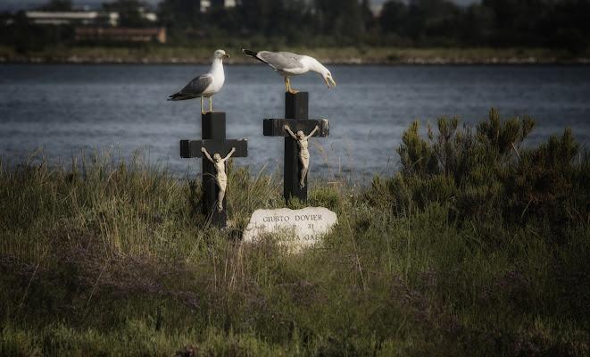 Umile sepoltura... di Gianva