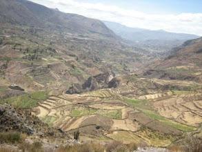 Photo: コルカ渓谷 インカよりずっと前から人が住んでいて段々畑で色々な作物がつくられているそう
