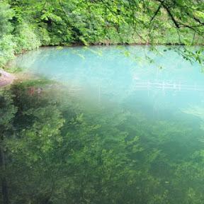【世界の絶景】ドイツ南部の青い湖「ブラウトップ」 / その神秘的な青さの秘密に迫る!