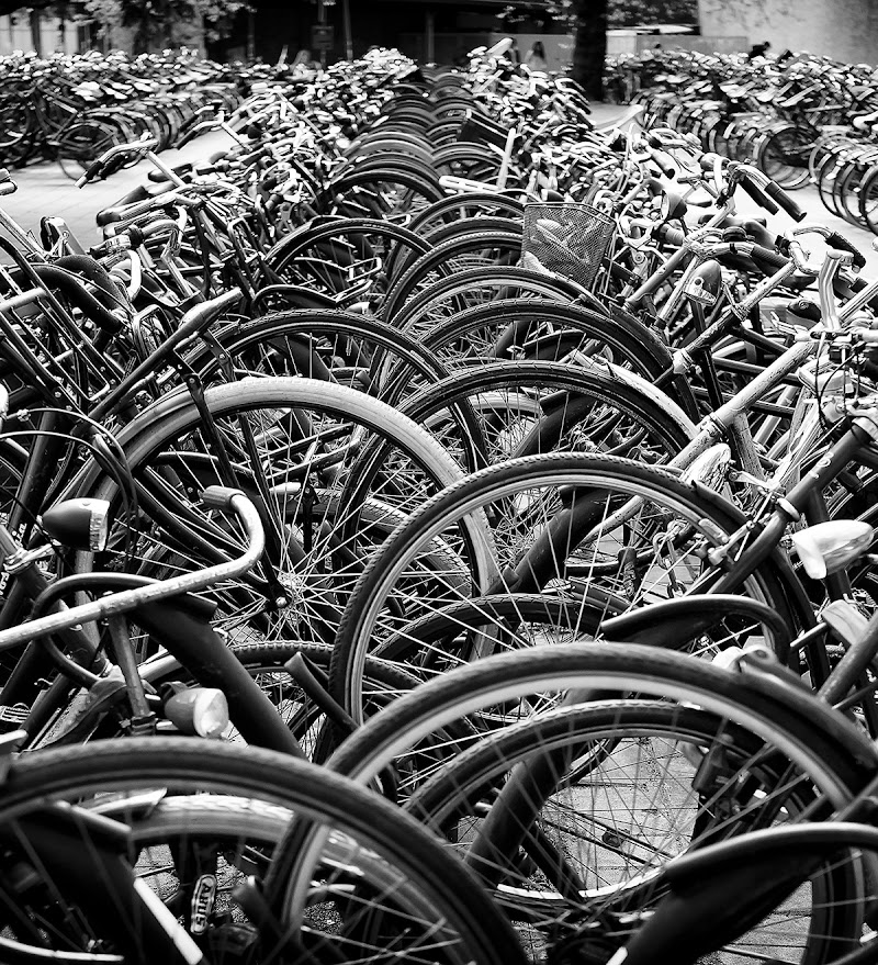 Un mare di cerchi di marco pardi photo