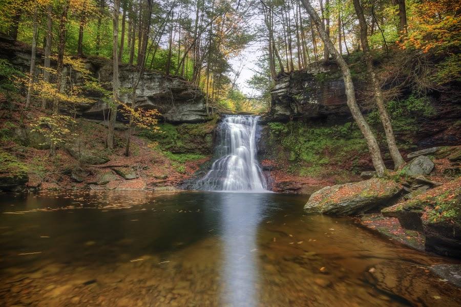Sullivan Falls in Autumn by Aaron Campbell - Landscapes Waterscapes ( stategamelands13, nature, sullivanfalls, autumn, waterfall, fall, slowshutter, pennsylvania, sullivancounty )