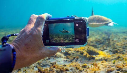 عکاسی در زیر آب