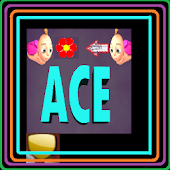 Ace city:The Journey of Twins