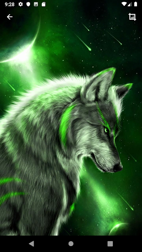 Wolf Wallpaper Hd App Report On Mobile Action App Store