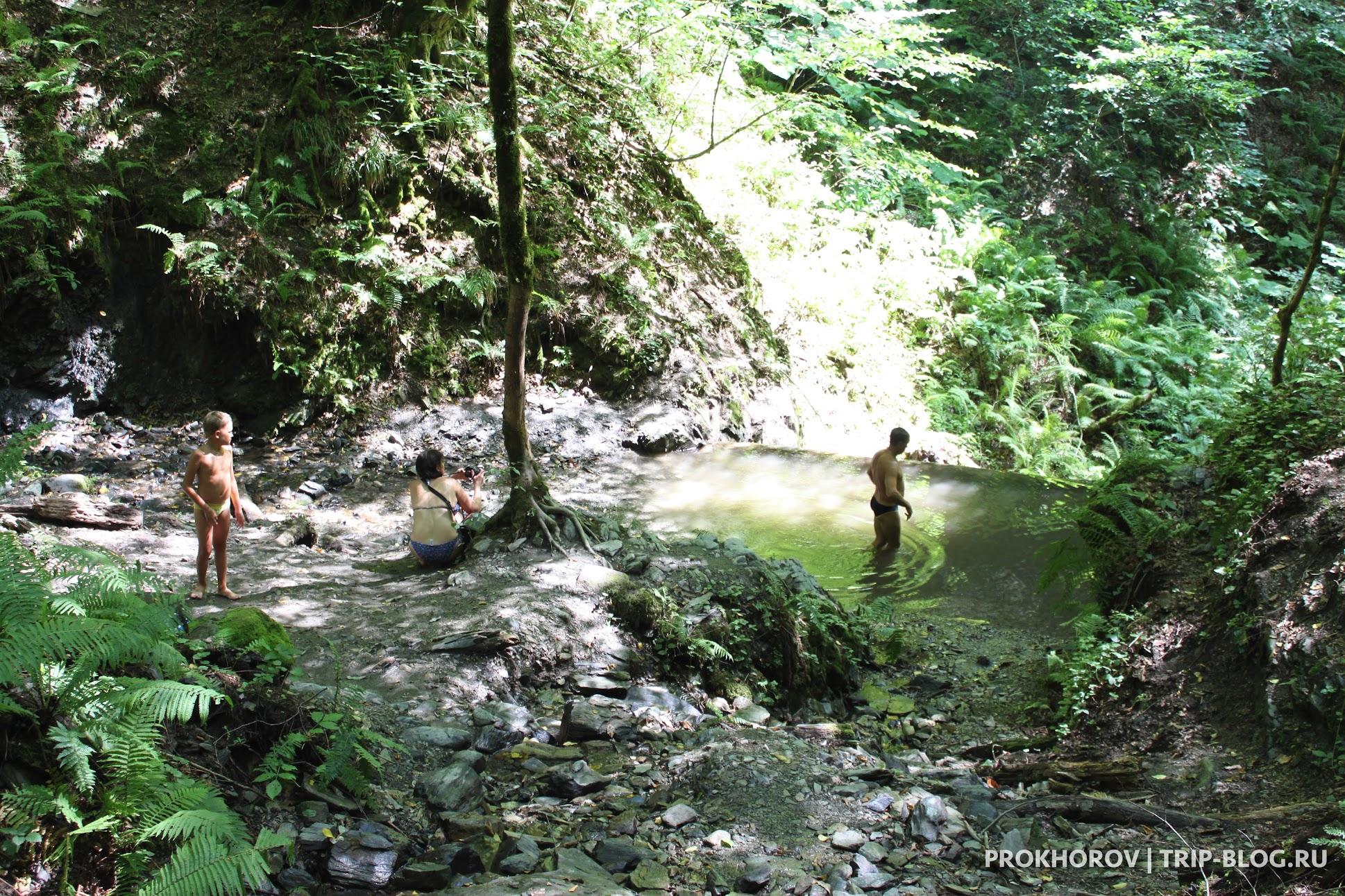 Горная речка и тропа здоровья в Роза Хутор