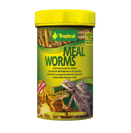 Mealworms 100ml/13g