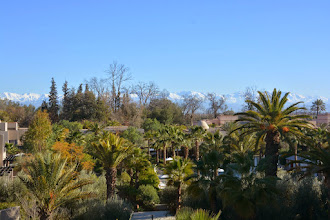 Photo: From my balcony at the Four Seasons Marrakech - the middle Atlas Mountains, snow capped