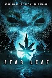 Star Leaf
