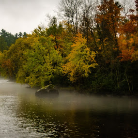 Misty Morning - Hayward Wisconsin by Michael Haagen - Landscapes Forests ( rain, boulder, river, misty, morning,  )