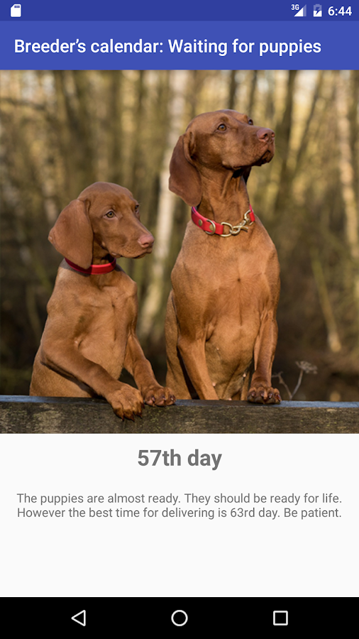 Breeder's calendar: puppies- screenshot
