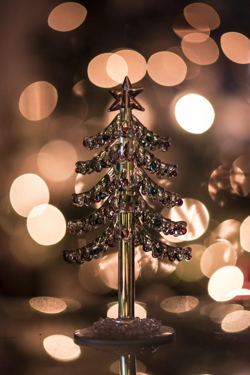 Merry Christmas di Elena Pardini